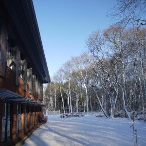 Hawthorn House - Winter